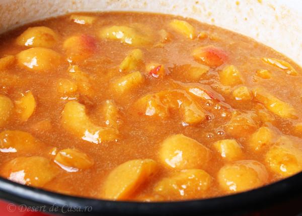 marmelada cu caise 1 (3)
