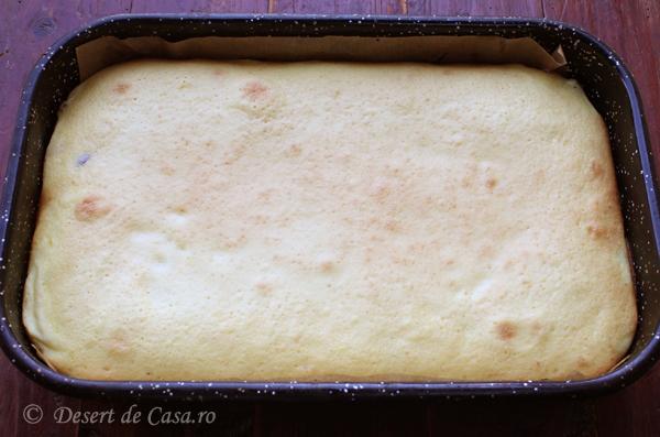 prajitura cu branza dulce si stafide (4)