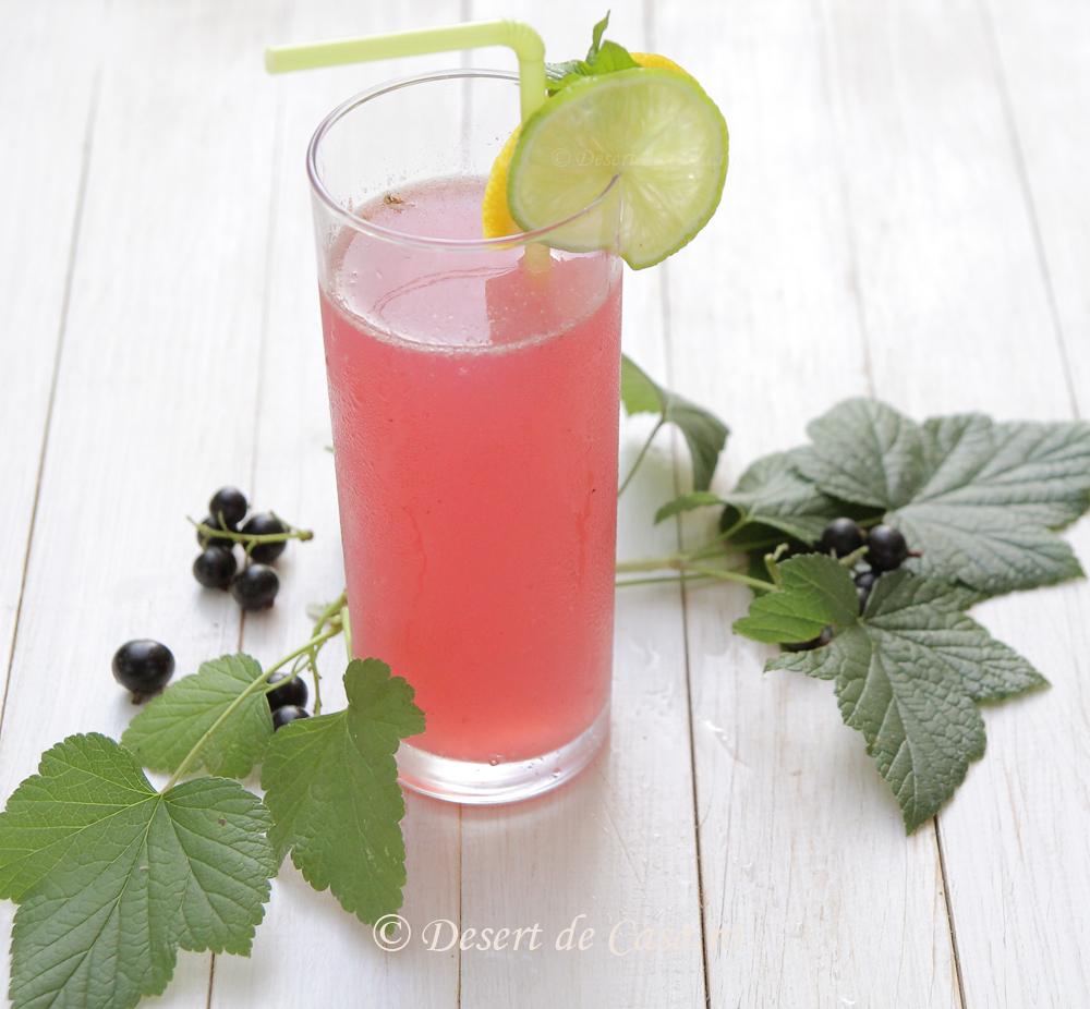 limonada cu coacaze negre