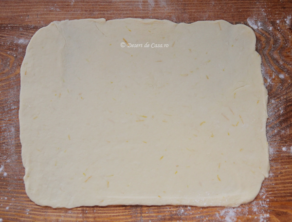 prajitura greta garbo (8)