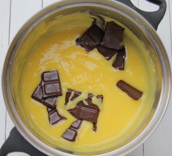 mousse de ciocolata (5)