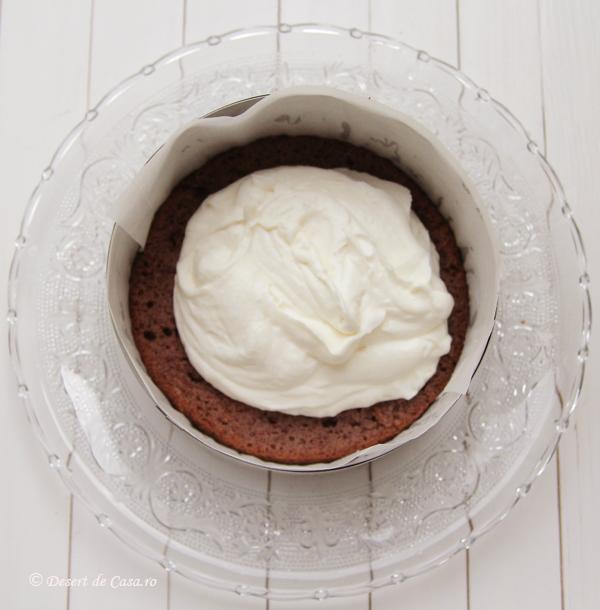 Tort Felie de Lapte (4)