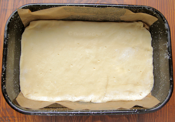 prajitura cu mere si aluat fraged (7)