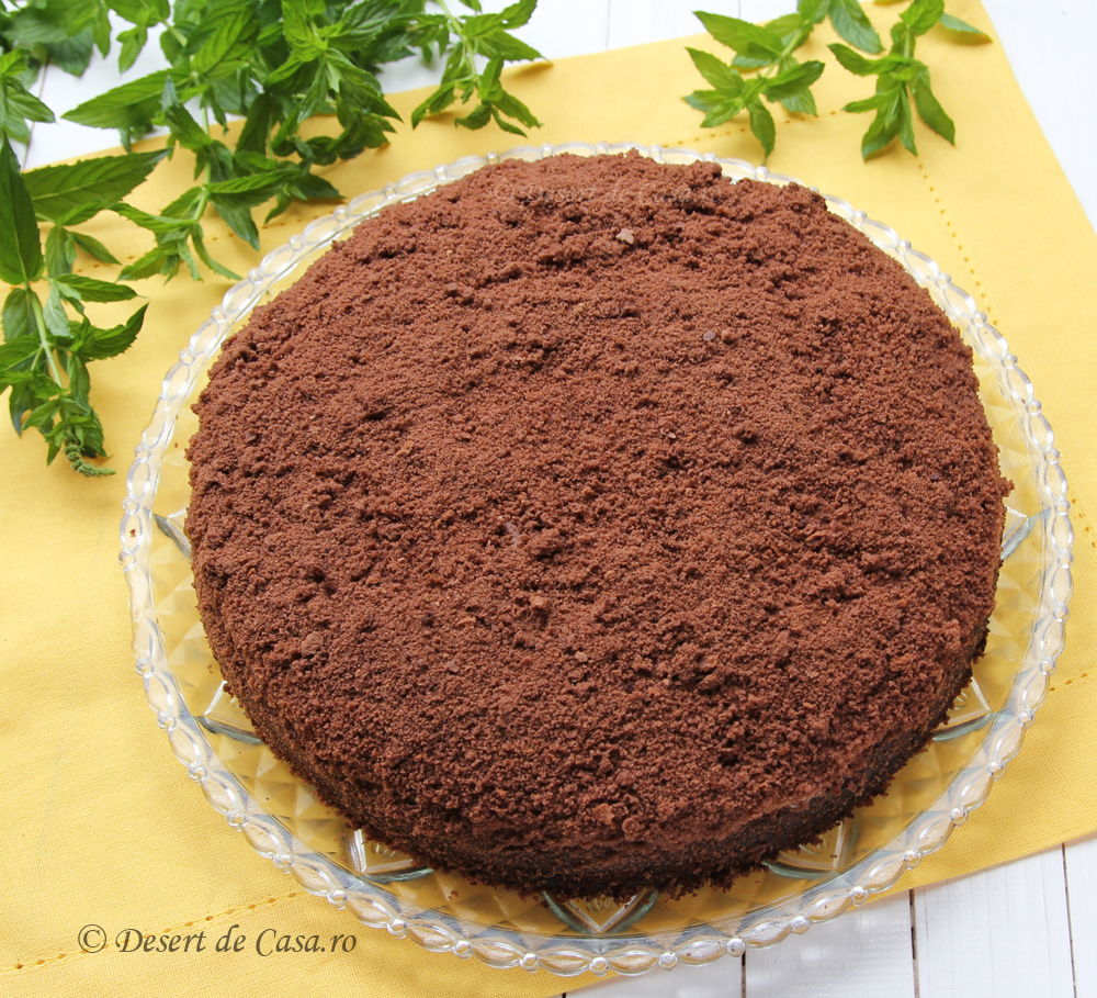 tort musuroi de cartita (14)