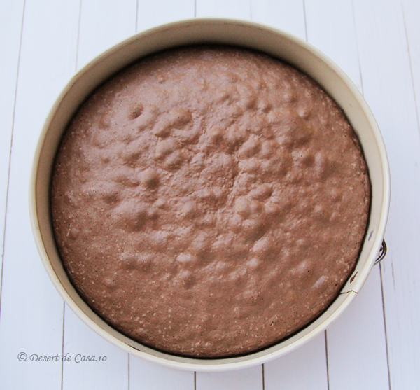 tort musuroi de cartita (7)