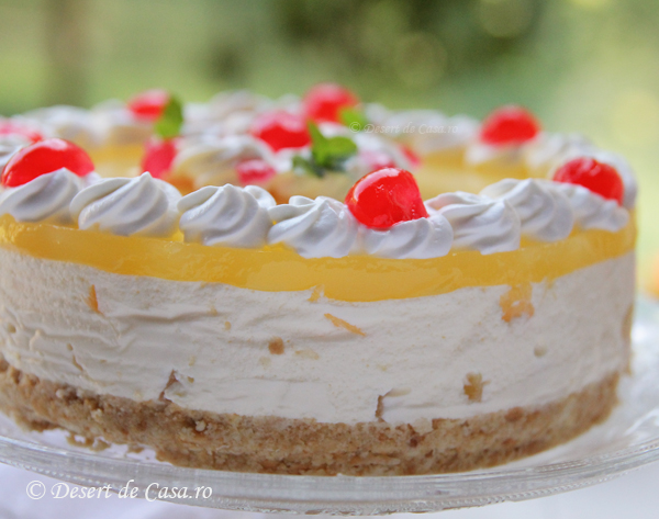 prajitura cu iaurt (9)