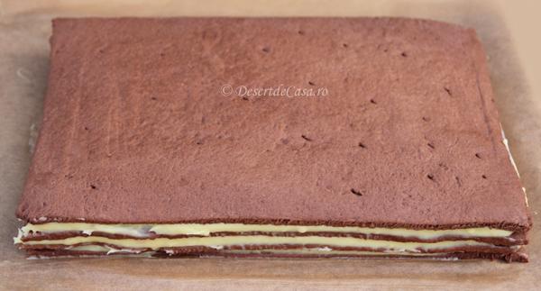 prajitura cu ciocolata (9)