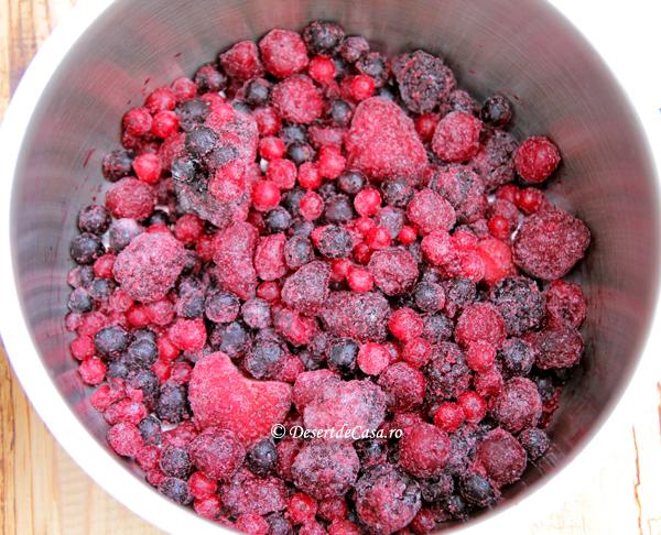 Sos de fructe de padure